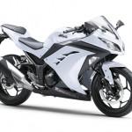 2013 Kawasaki Ninja 250R (28)