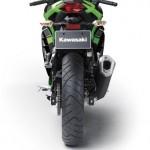 2013 Kawasaki Ninja 250R (39)