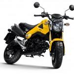 2013 Honda MSX125_1