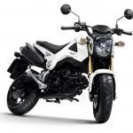2013 Honda MSX125_2