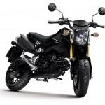 2013 Honda MSX125_3