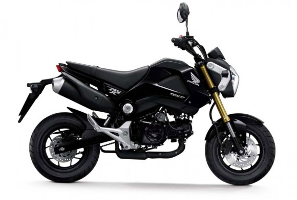 More Images of the 2013 Honda MSX125