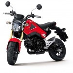 More Images of the 2013 Honda MSX125_12