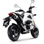 More Images of the 2013 Honda MSX125_17