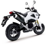 More Images of the 2013 Honda MSX125_18