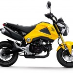 More Images of the 2013 Honda MSX125_3