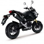 More Images of the 2013 Honda MSX125_9