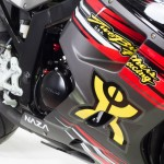 NAZA Blade TBR 2013 Edition 250cc_10