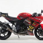 NAZA Blade TBR 2013 Edition 650cc