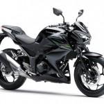 2013 Kawasaki Z250 Black