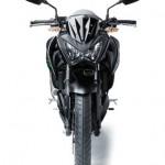 2013 Kawasaki Z250 Front