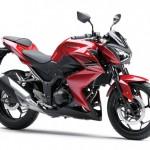 2013 Kawasaki Z250 Red