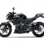 2013 Kawasaki Z250 Side