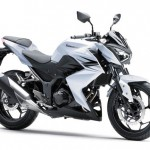 2013 Kawasaki Z250 White