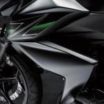 2013 Kawasaki Z250 Z Cover