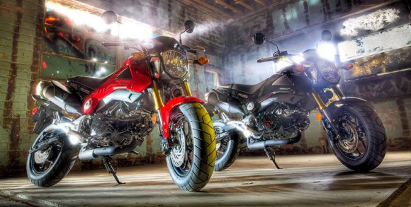 2014 Honda Grom Arriving in the United States