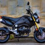 2014 Honda Grom Metallic Black