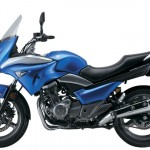 Official Pictures of the 2014 Suzuki GW250S_3