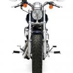 2014 Harley-Davidson 1200 Custom_3