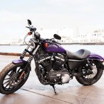 2014 Harley-Davidson Iron 883 Purple