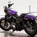 2014 Harley-Davidson Iron 883_2