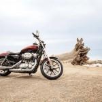 2014 Harley-Davidson SuperLow_2