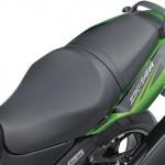 2014 Kawasaki Ninja ZX-14R Ohlins Editon Seat_1