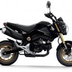 2014 Honda MSX125 Grom Black