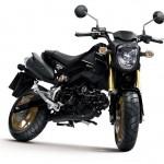 2014 Honda MSX125 Grom Black_1