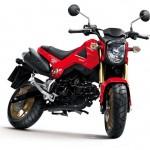 2014 Honda MSX125 Grom Red