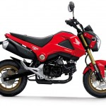 2014 Honda MSX125 Grom Red_1