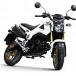 2014 Honda MSX125 Grom White