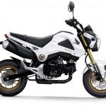 2014 Honda MSX125 Grom White_1