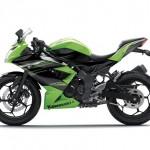 2014 Kawasaki Ninja 250SL or RR Mono Green