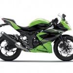 2014 Kawasaki Ninja 250SL or RR Mono Green_1