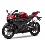 2014 Yamaha YZF-R125 Europe-Specs Anodized Red_2