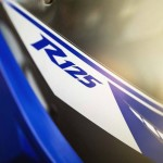 2014 Yamaha YZF-R125 Europe-Specs Graphic