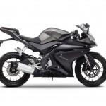 2014 Yamaha YZF-R125 Europe-Specs Mat Grey_3