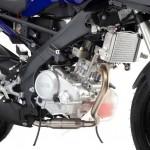 2014 Yamaha YZF-R125 Europe-Specs_1