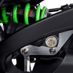 2015 Kawasaki Ninja ZX-10R 30th Anniversary Edition Suspension