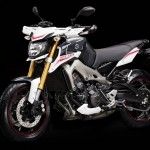 2014 Yamaha MT-09 Street Rally_2