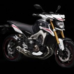 2014 Yamaha MT-09 Street Rally_6