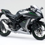 2015 Kawasaki Ninja 250 Metallic Moondust Gray Ebony