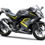 2015 Kawasaki Ninja 250 Metallic Moondust Gray Ebony with Yellow Stripe