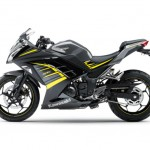 2015 Kawasaki Ninja 250 Metallic Moondust Gray Ebony with Yellow Stripe_1