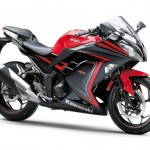 2015 Kawasaki Ninja 250 Special Edition Passion Red Ebony