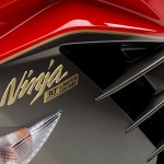 2015 Kawasaki ZX-14R Ninja Limited Edition Badge_1