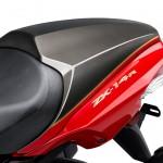 2015 Kawasaki ZX-14R Ninja Limited Edition_1