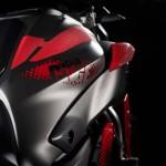 2015 Yamaha MT-07 Moto Cage Detail_10