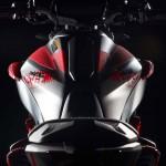 2015 Yamaha MT-07 Moto Cage Detail_11
